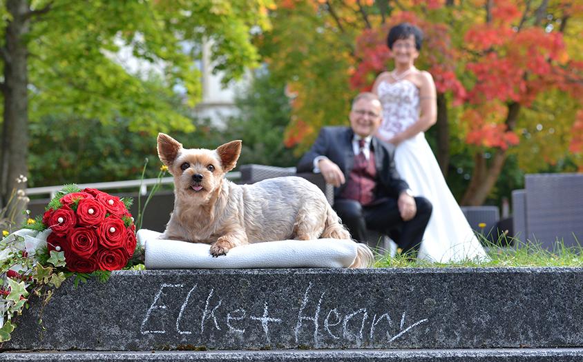 Paarbilder Hochzeitsfotos