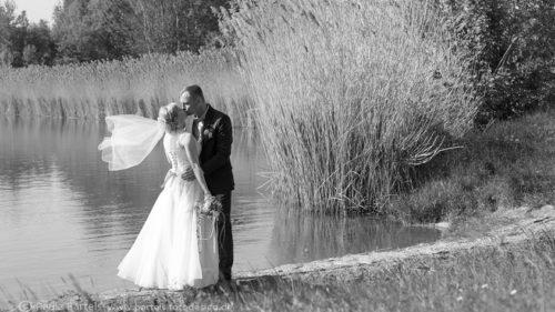 Hochzeitsfotos lebendig Natur